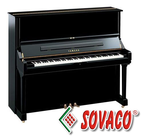 gioi thieu dan piano co