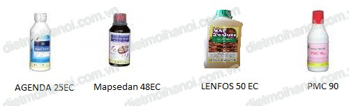 Diet con trung Ha Noi 0983224779