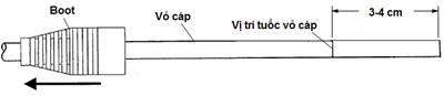 Hat mang RJ45 Dau bam mang RJ45 Dau chup mang Hop hat mang AMP Cat5 Cat6 Gia re cho du an