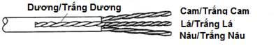 Hop hat mang AMP RJ45 Cat6 3 manh hang chinh hang Hop mang AMP Rj45 Cat6e Loai 4 manh si le gia re