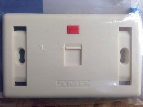 Bo Wallplate 12 port chinh hang AMP gom rj11 rj45 mat de