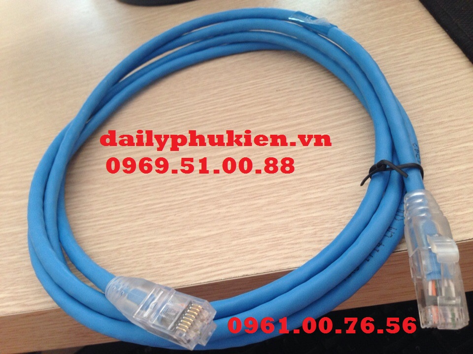 Patch cord Day nhay AMP Cat5 Cat6 UTP chinh hang